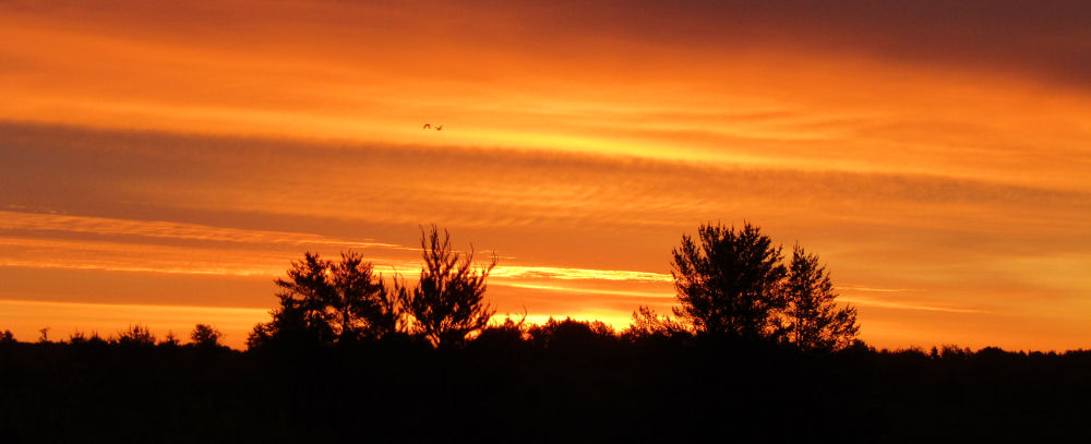 St Croix River Sunset